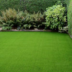 Turf grass lawn make environment clean