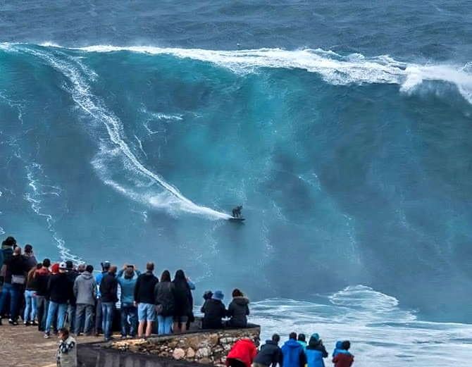 Big wave surfing in nazare portuga pics