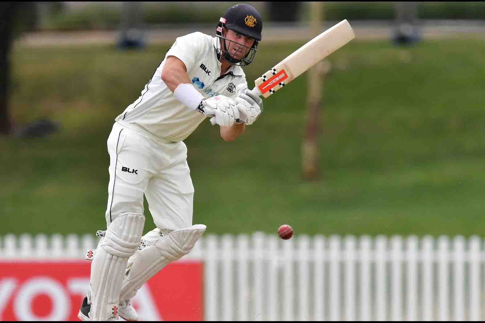 Shaun Marsh wins title of best domestic player of the year for the second time in a row