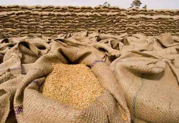 The confiscated wheat and gram from the warehouse will be subsidized